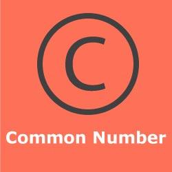 Teer Common Numbers